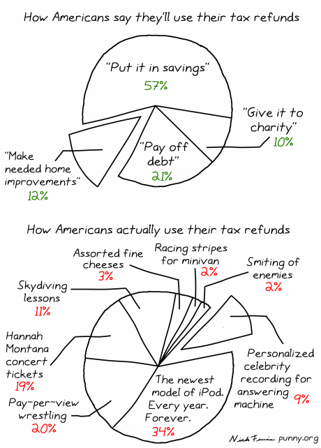 comic 5 - how americans spend their tax refund