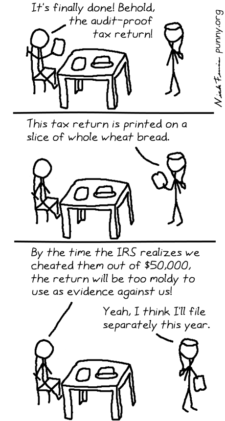 comic 19 - tax return